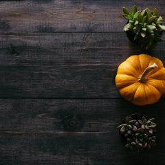 HAPPY THANKSGIVING – SILVER LININGS